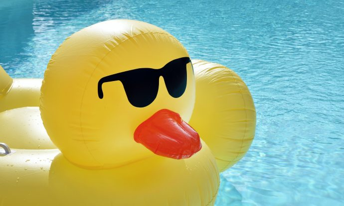 rubber duck in a pool